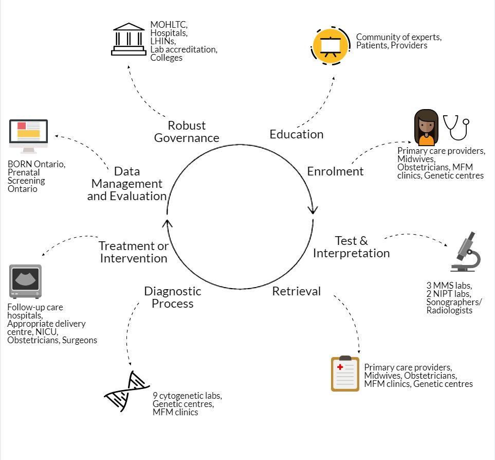 A Diagram which shows the relation between education, enrollment, tests and interpretation, retrieval, diagnostic process, treatment or intervention, data management and evaluation and robust governance.